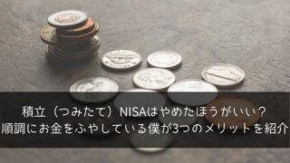 積立(つみたて)NISAはやめたほうがいい?順調にお金をふやしている僕が3つのメリットを紹介
